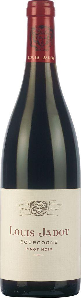 Bourgogne Rouge Pinot Noir 2019 Louis Jadot Burgund