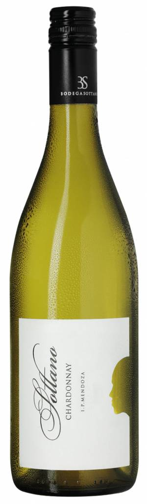 Chardonnay I.P. Mendoza - Argentina 2019 Bodega Sottano Argentinien