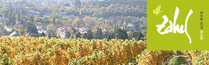 Weingut Zahel